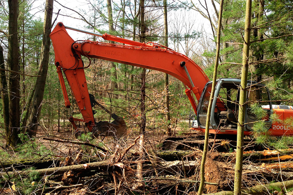 landclearing_0311